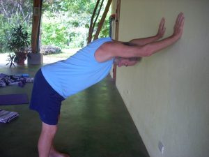 adho-mukha-against-wall-mary-byerly-yoga