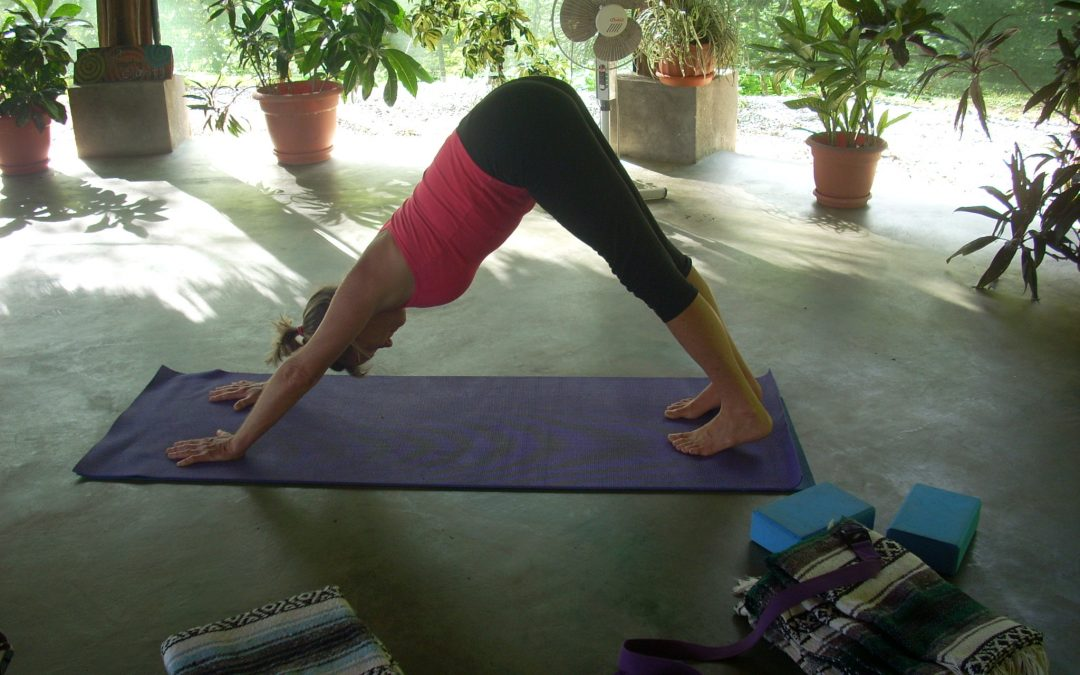 Adho Mukha Svanasana – Downward Facing Dog
