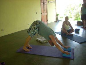 adho-muka-adaptation-using-blocks-mary-byerly-yoga