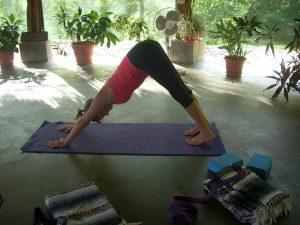 adho-mukha-mary-byerly-yoga